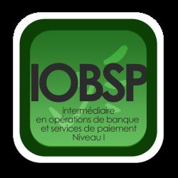 Livret de formation complémentaire IOBSP 40H: Obtention du statut IOBSP I (cumul expérience professionnelle et...