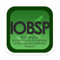 Livret de formation complémentaire IOBSP 40h : Obtention du statut IOBSP I (cumul statut IOBSP II et formation)