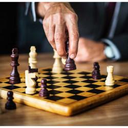 Les stratégies sociétaires patrimoniales